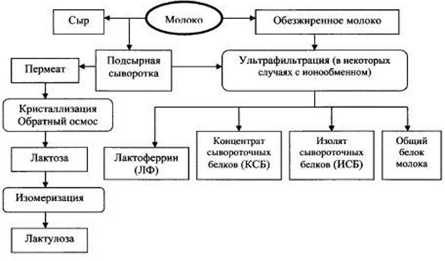 Схема получения продуктов из сыворотки